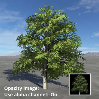 Tree image assigned to Opacity image setting and Use alpha channel enabled.