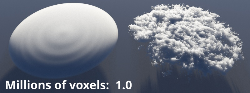 Millions of voxels = 1.0